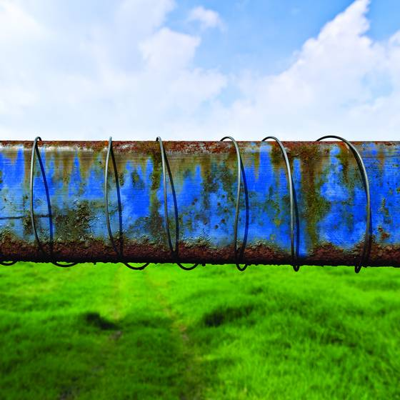 Blue_gate