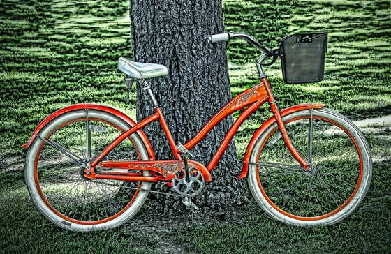 Bicycle parked in the park