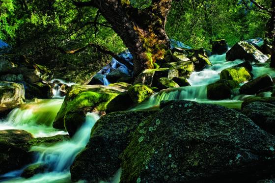 Spring_runoff