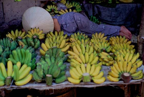 Banana_vendor