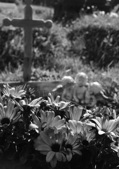 Garden_angel
