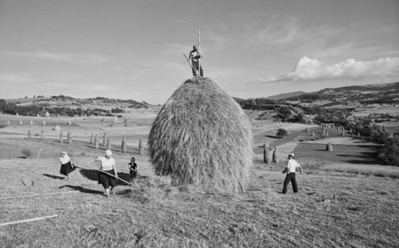 Hayharvest_in_the_m_ramaros_region