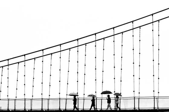 4_umbrellas
