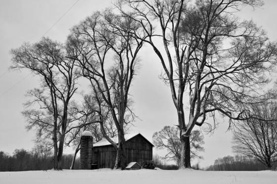 Winter_barn