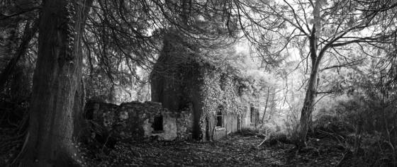 Abandoned_cottage