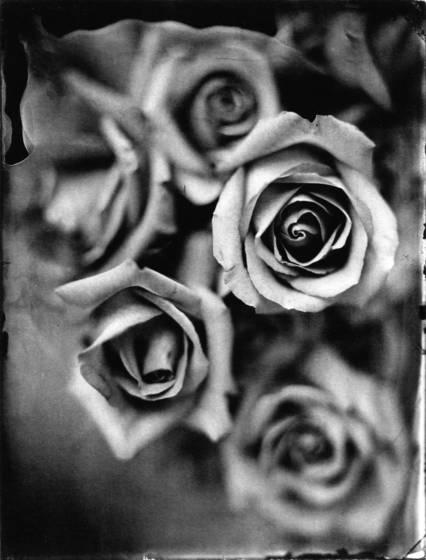 Flowers__1