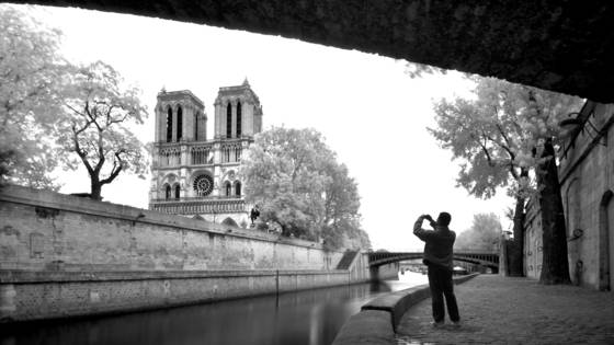 The_tourist
