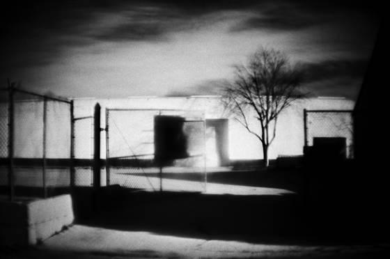 Life_among_the_concrete