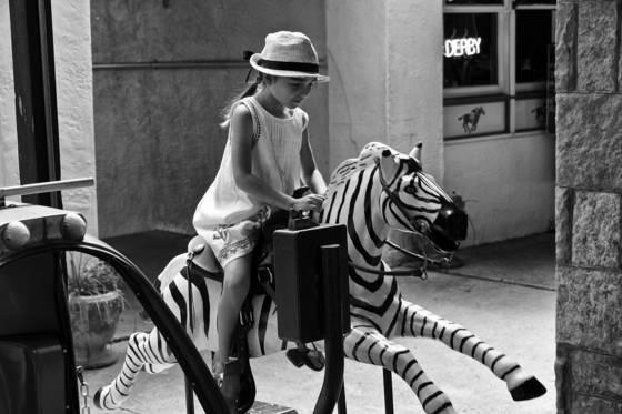 Zebra_rider