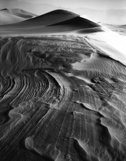 Dunes_in_the_wind