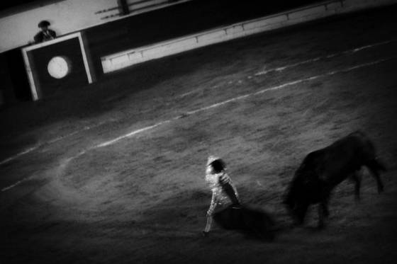 Tijuana_bullfight