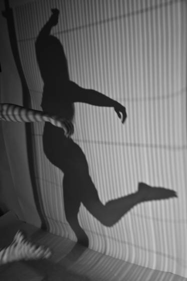 Shadows__3