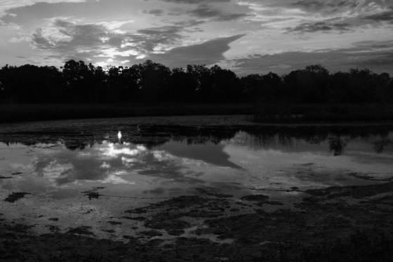 Delta_sunrise