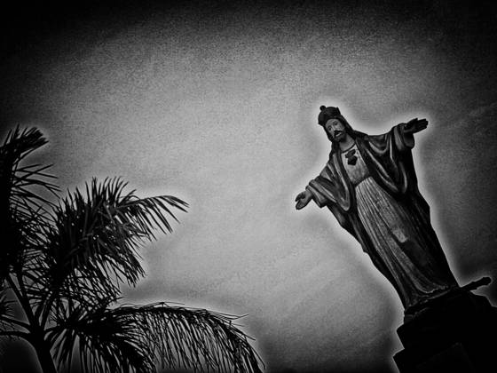 Christ and the palm tree