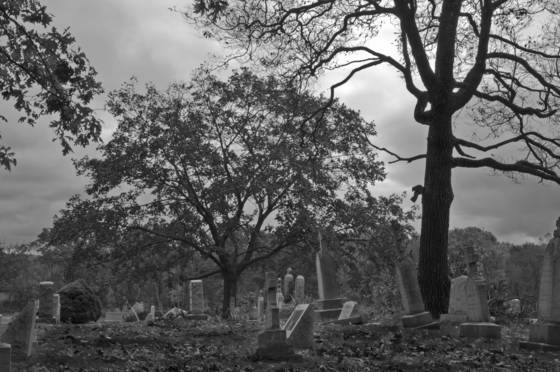 Cemetery_2