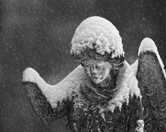 Snowy_vigil
