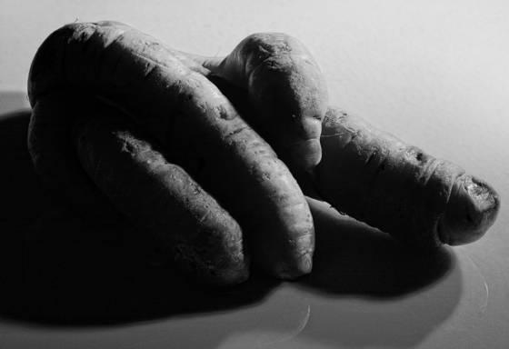 Carrot_fingers