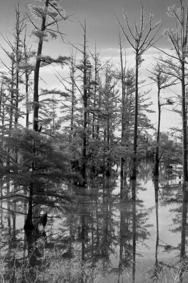 Wolf_lake