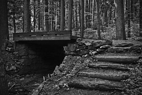 A_bridge_to_cross