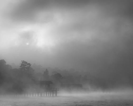 Fog_on_bay