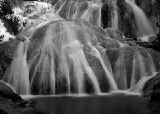 Water_veins