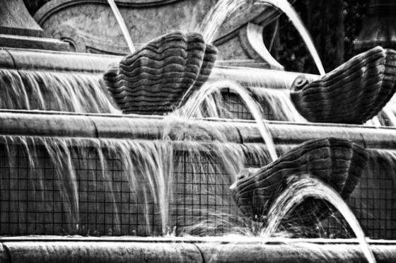 Playful_fountain