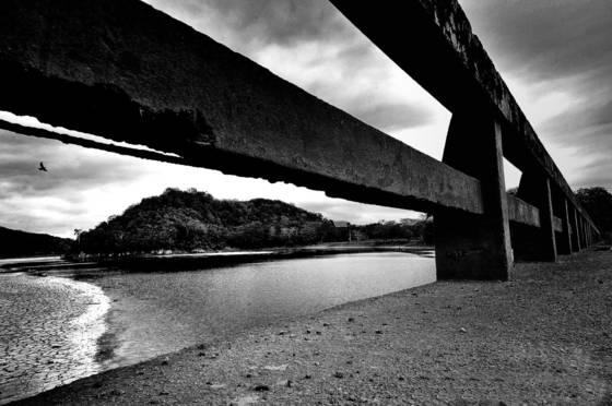 Bridge__06