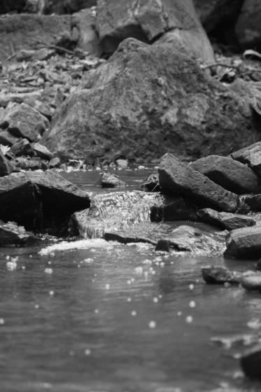 Borer_s_creek