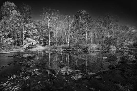 Eno_river_state_park_1
