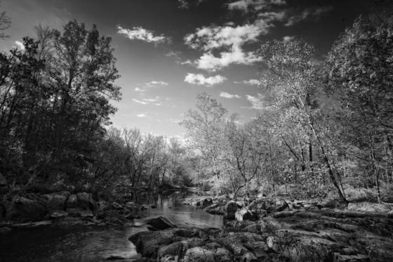 Eno_river_state_state_park_2