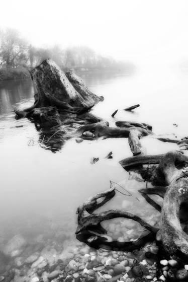 Foggy_river