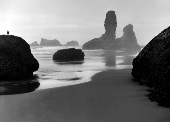 Oregon_coast_2