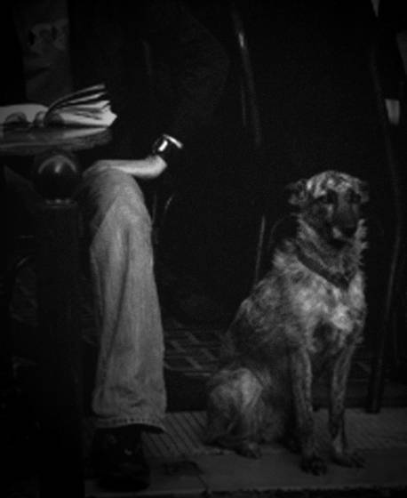 Un_chien_au_bistro