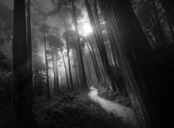 Presidio_path