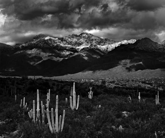 View_of_catalina_mountains_from_saguaro_national_park