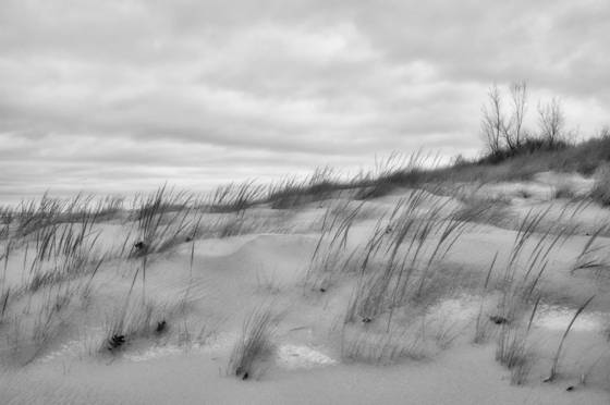 Dunes_and_snow