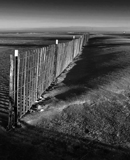 Beach_fence