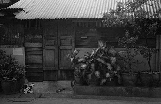 Thai_house_bangkok