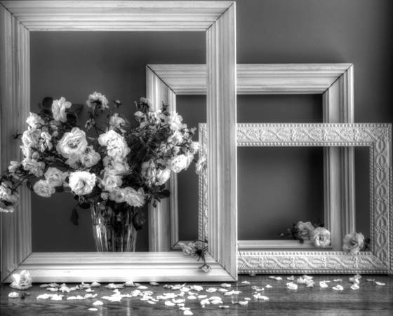 Framed_in_white