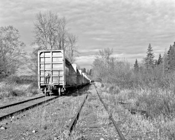 Resting_train