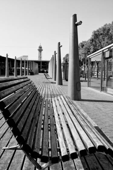 The bench and the lamp posts