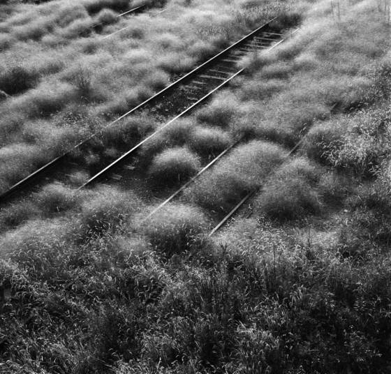 Tracks
