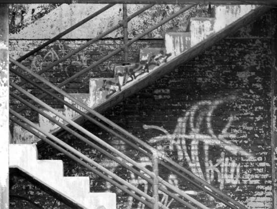 Stairway_to___