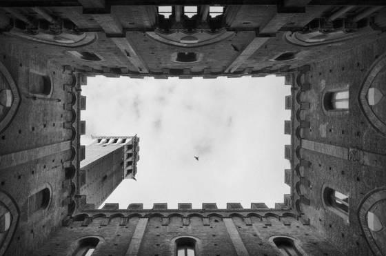 Torre_del_mangia