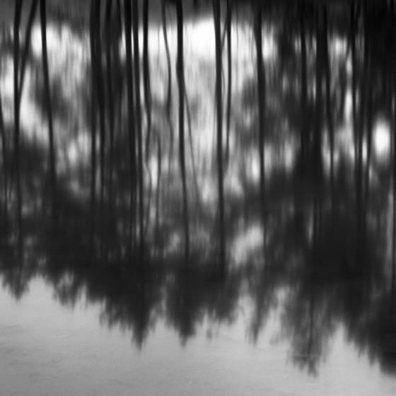 Reflection_no__1