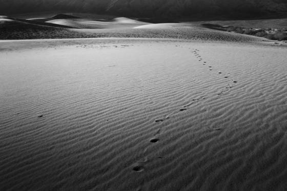 Lonely footprints