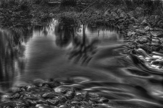 Reflection_in_a_stream
