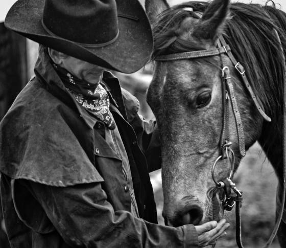 A_cowboy_and_his_horse
