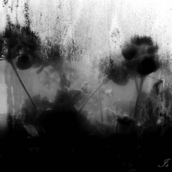 Untitled_12
