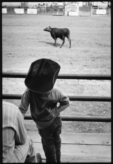 Little_cowboy